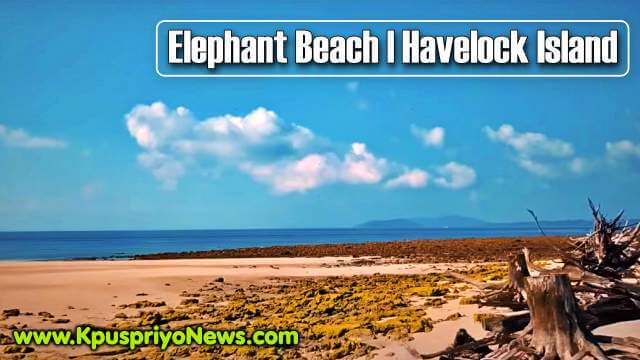 Havelock Island - Elephant Beach